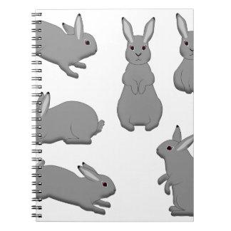 Rabbit grey notebooks