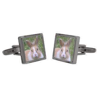 rabbit gunmetal finish cufflinks