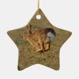 Rabbit Hopping Ornament