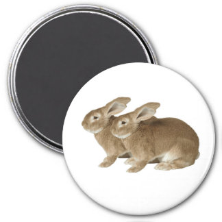 Rabbit image for Large Round Magnet