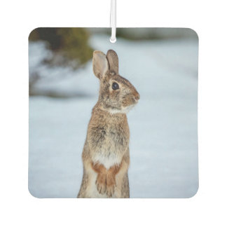 Rabbit in the snow car air freshener