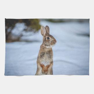 rabbit tea towels zazzle au