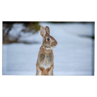 Rabbit in the snow place card holder