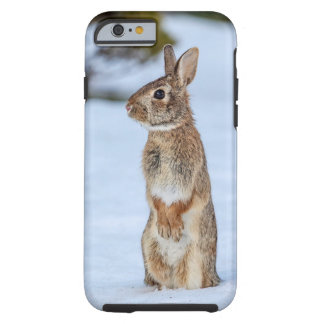 Rabbit in the snow tough iPhone 6 case
