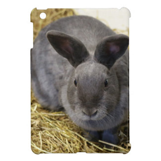Rabbit iPad Mini Covers