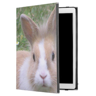 "rabbit iPad pro 12.9"" case"