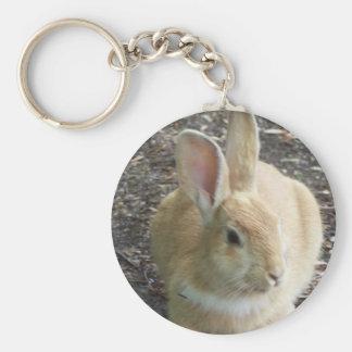 Rabbit Key Chains