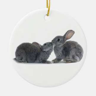 Rabbit Kiss Christmas Tree Ornament