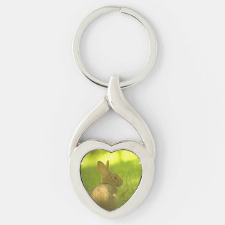 Rabbit Silver-Colored Twisted Heart Key Ring