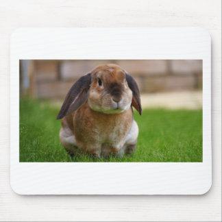 Rabbit minni lop mouse pad