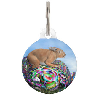Rabbit on its colorful egg for Easter - 3D render Pet Tag