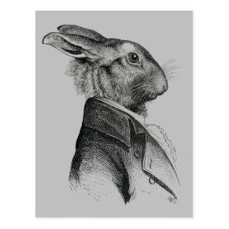 Rabbit Portrait Profile Postcard