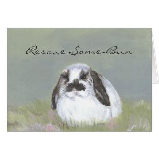 Rabbit Rescue Card