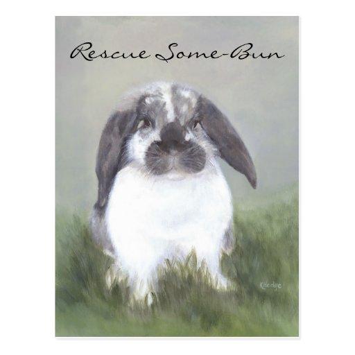 Rabbit Rescue Postcard