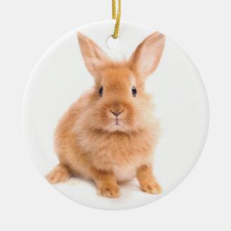 Rabbit Round Ceramic Decoration