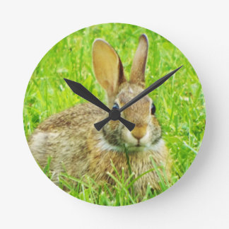 rabbit round clock