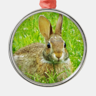 rabbit Silver-Colored round decoration