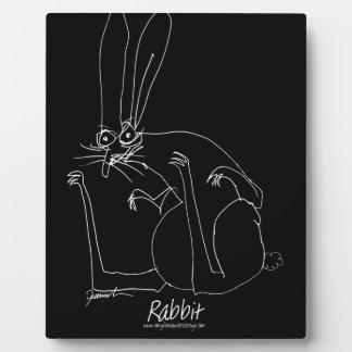 rabbit.tif plaque