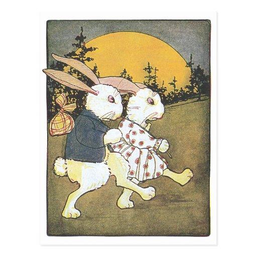 Rabbits and Rising Sun Post Cards