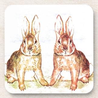 Rabbits Coaster