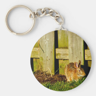 Rabbits in the Backyard Keychains