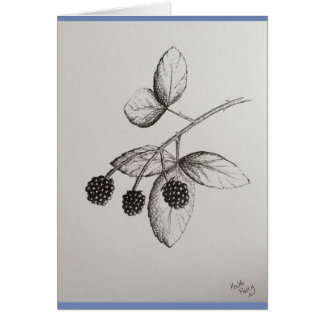 Rabbitswood Blackberries Illustration Card