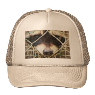raccon   Trucker Hat  customizable