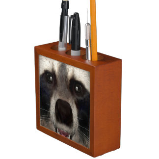 Raccoon Desk Organiser