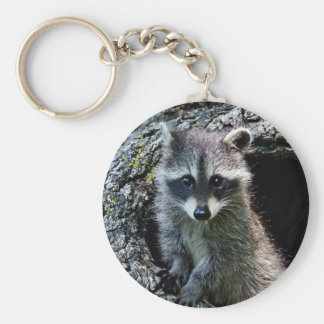 Raccoon in the Den Basic Round Button Key Ring