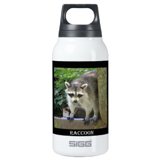 Raccoon Insulated Water Bottle