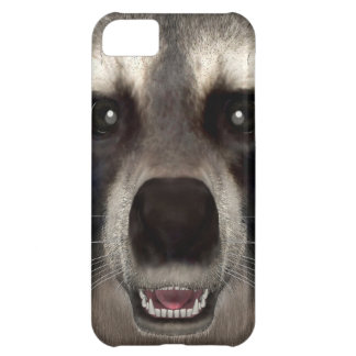 Raccoon iPhone 5C Case