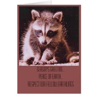 Raccoon Kit Christmas Greetings Note Card