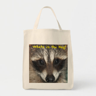Raccoon Kit: What's in the Bag?
