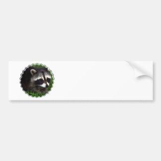 Raccoon Mask Bumper Sticker