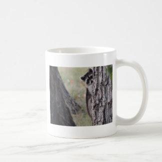 Raccoon Coffee Mugs
