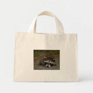 Raccoon - Procyon lotor Canvas Bag
