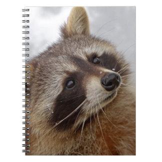Raccoon Spiral Note Book