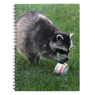 Raccoon Spiral Note Book