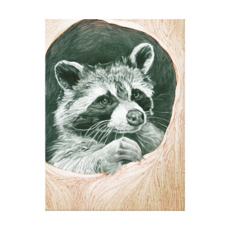 Raccoon Stretched Canvas Print