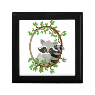 Raccoon WOODLANDCRITTERS Gift Box