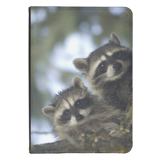 Raccoons Procyon Lotor) of Fish Lake, Central Kindle 4 Cover