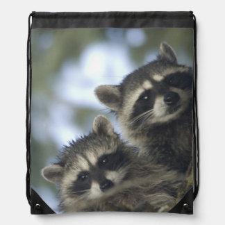 Raccoons Procyon Lotor) of Fish Lake, Central Drawstring Bag