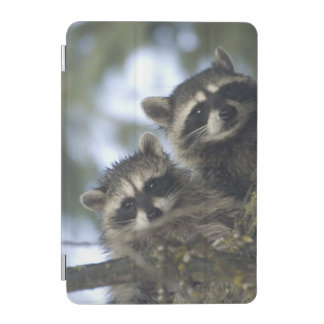 Raccoons Procyon Lotor) of Fish Lake, Central iPad Mini Cover
