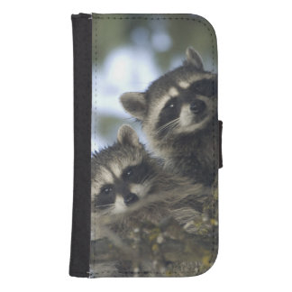 Raccoons Procyon Lotor) of Fish Lake, Central Galaxy S4 Wallet