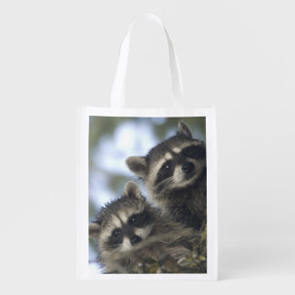 Raccoons Procyon Lotor) of Fish Lake, Central Reusable Grocery Bag
