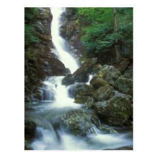 Race Brook Upper Falls, Mount Everett MA Postcard