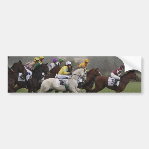 Race Horse Field Bumper Sticker