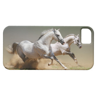Race The Wind Horses Case For The iPhone 5