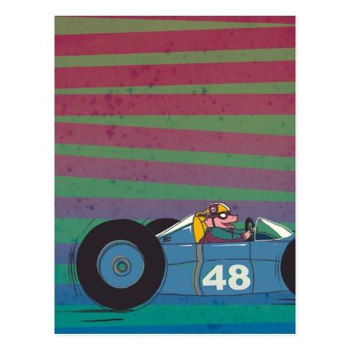 Racing Car Vintage Pig Postcard