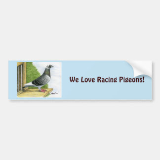 Racing Homer On the Landing Board Bumper Sticker